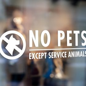 image about No Pets Allowed Except Service Animals Sign Printable identified as Window Indications City Art